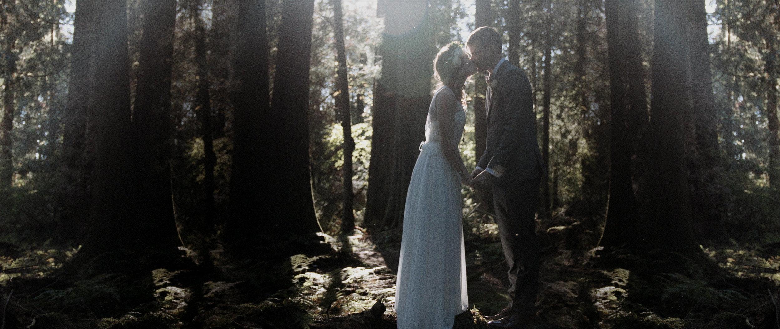vancouver-wedding-videography166.jpg