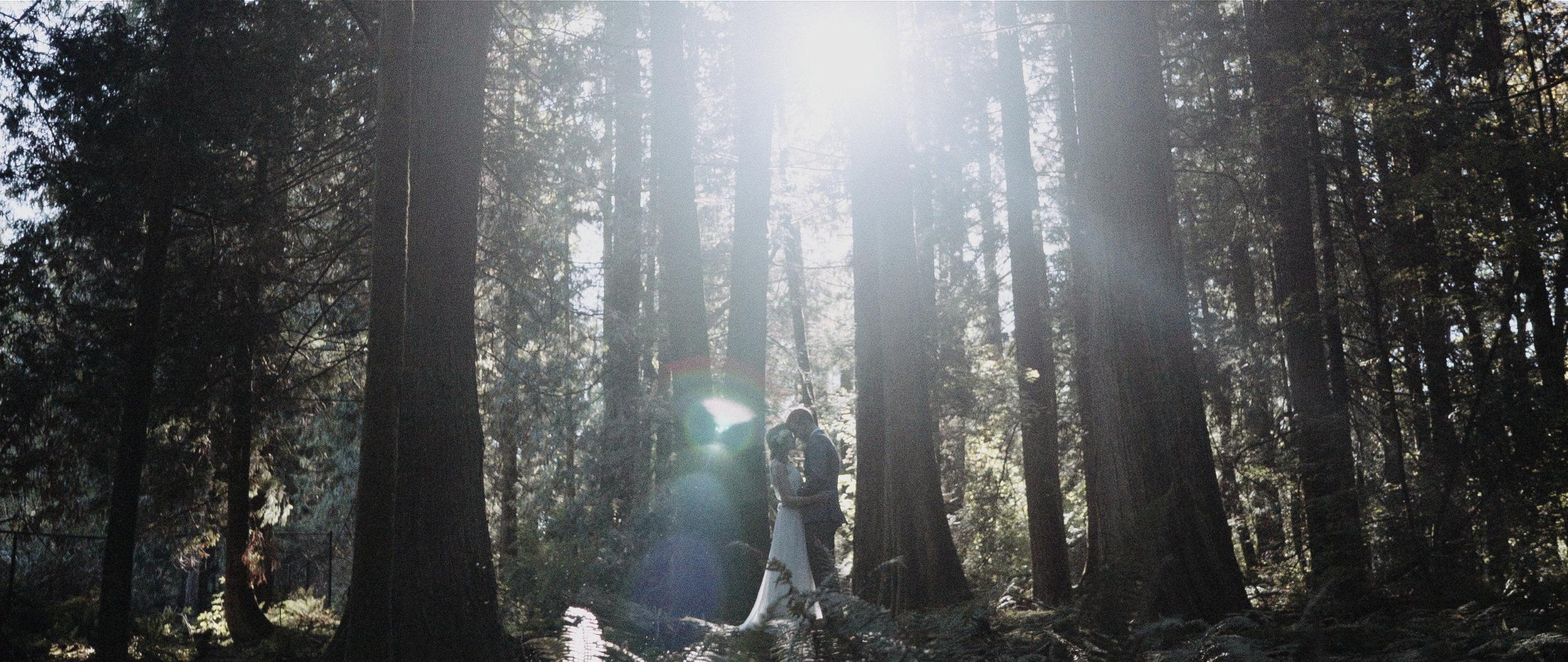 vancouver-wedding-videography176.jpg