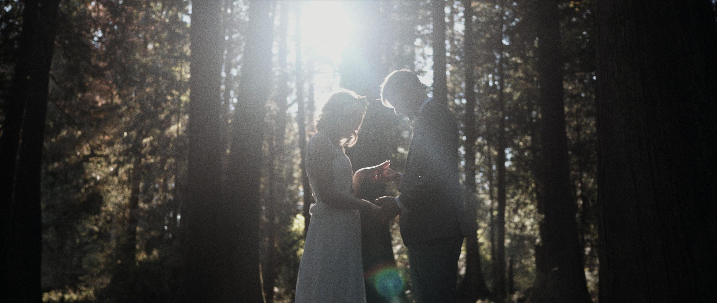vancouver-wedding-videography201.jpg