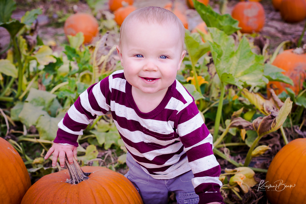 Little Pumpkin-4.jpg