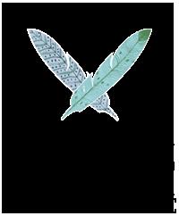 2_birds_logo.png