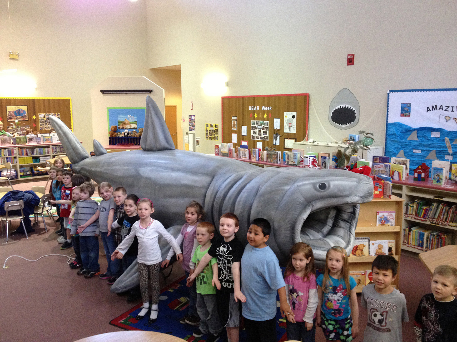 Basking Shark Size