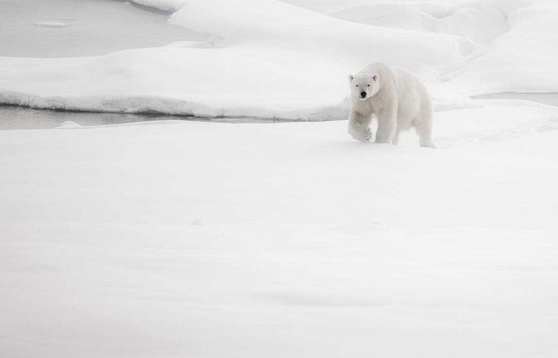 schmid_chris_Svalbard.jpg