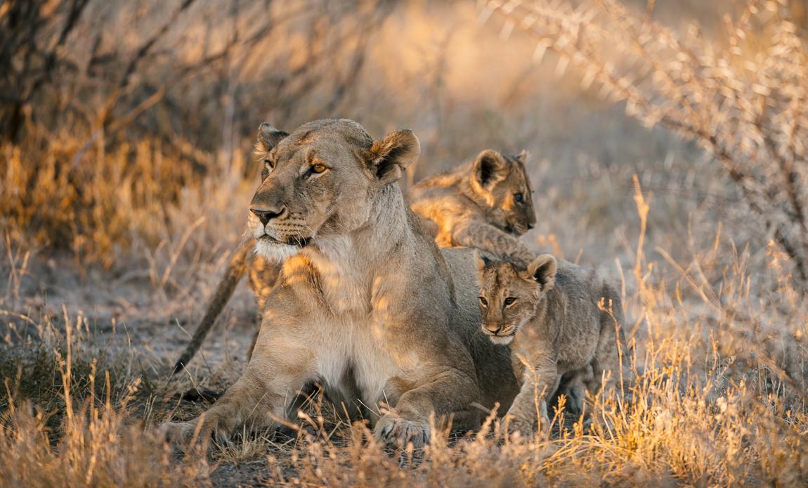 namibia-chris_schmid-7.jpg