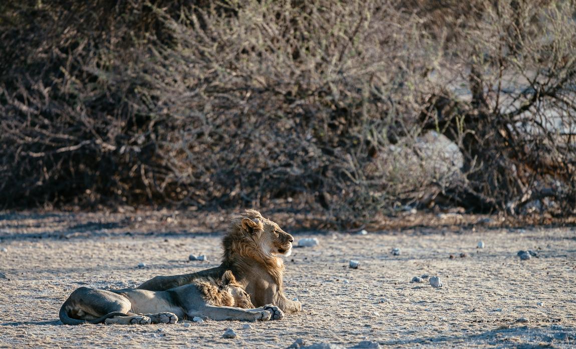 namibia-chris_schmid-18.jpg