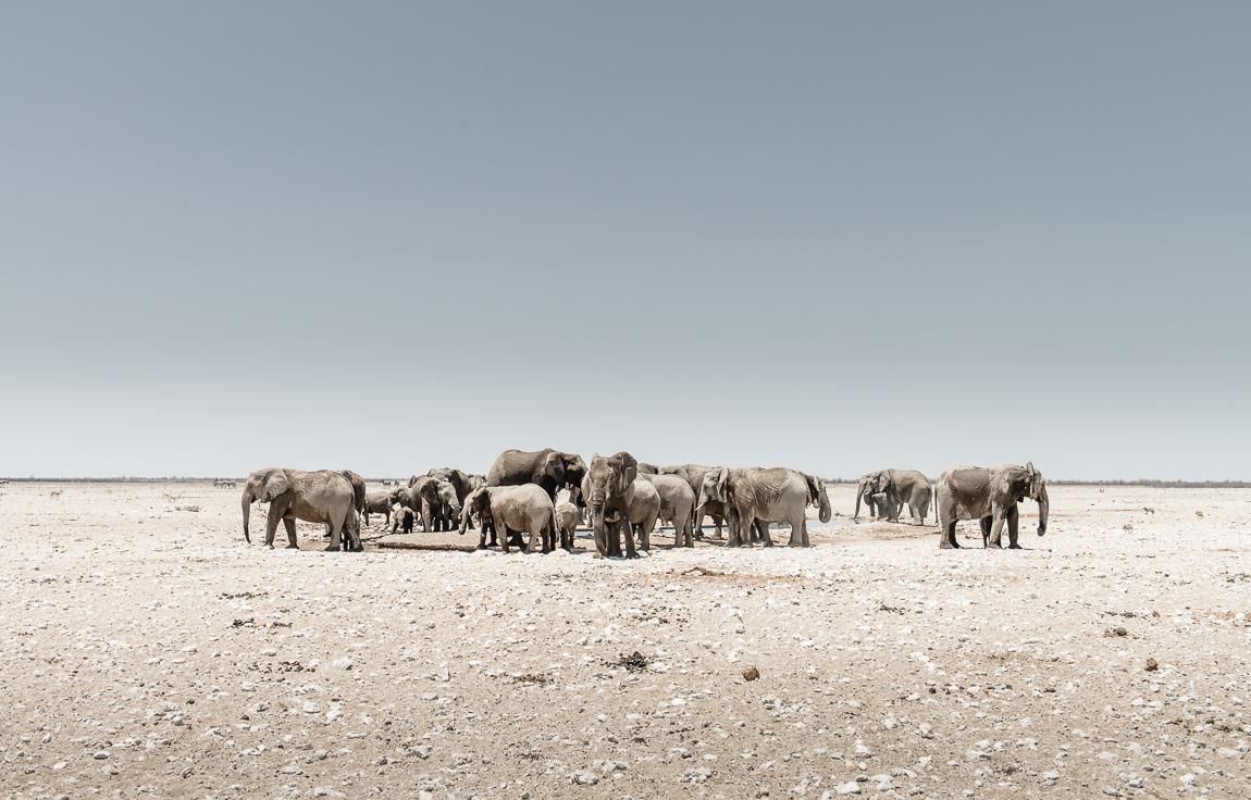 namibia-chris_schmid-25.jpg