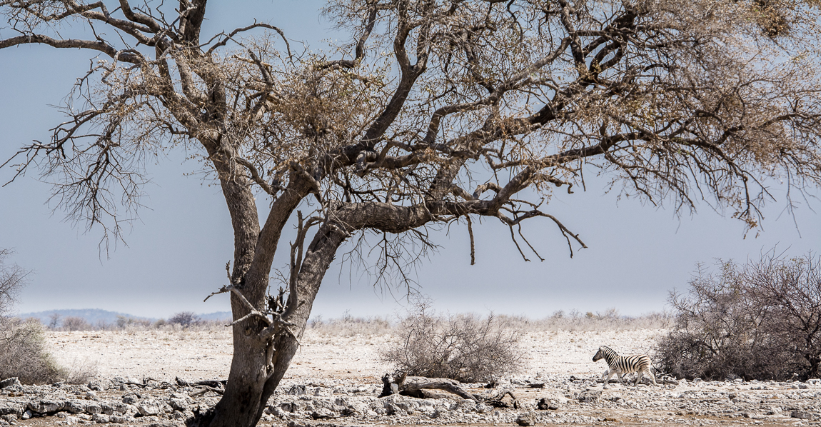 namibia-chris_schmid-27.jpg