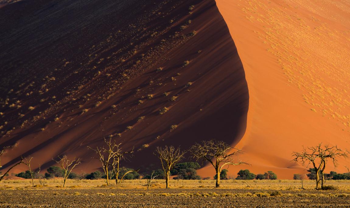 namibia-chris_schmid-65.jpg