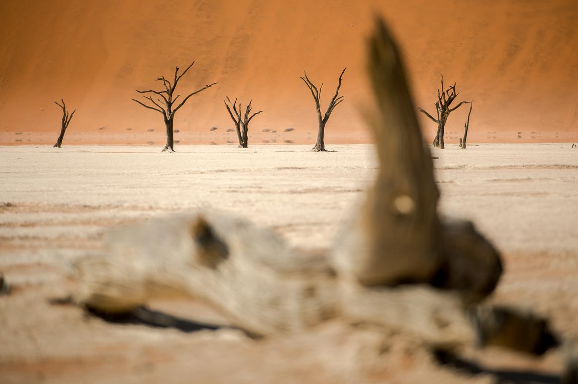 namibia-chris_schmid-69.jpg