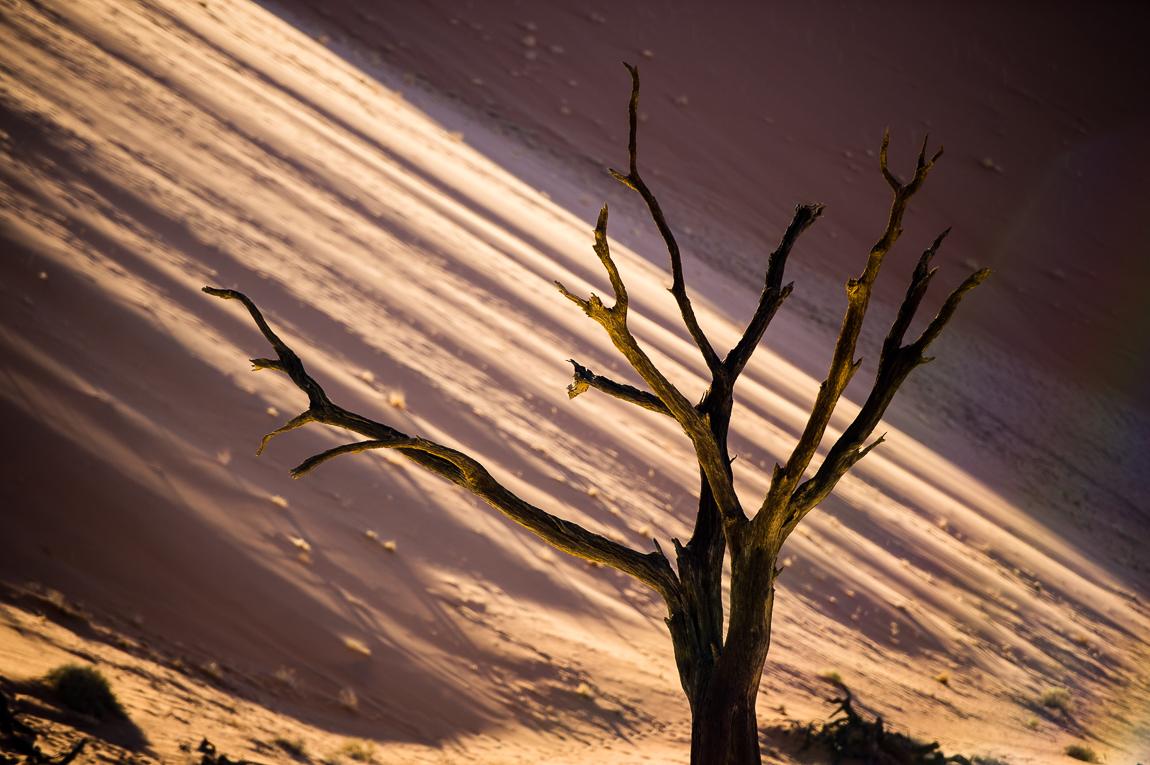 namibia-chris_schmid-81.jpg
