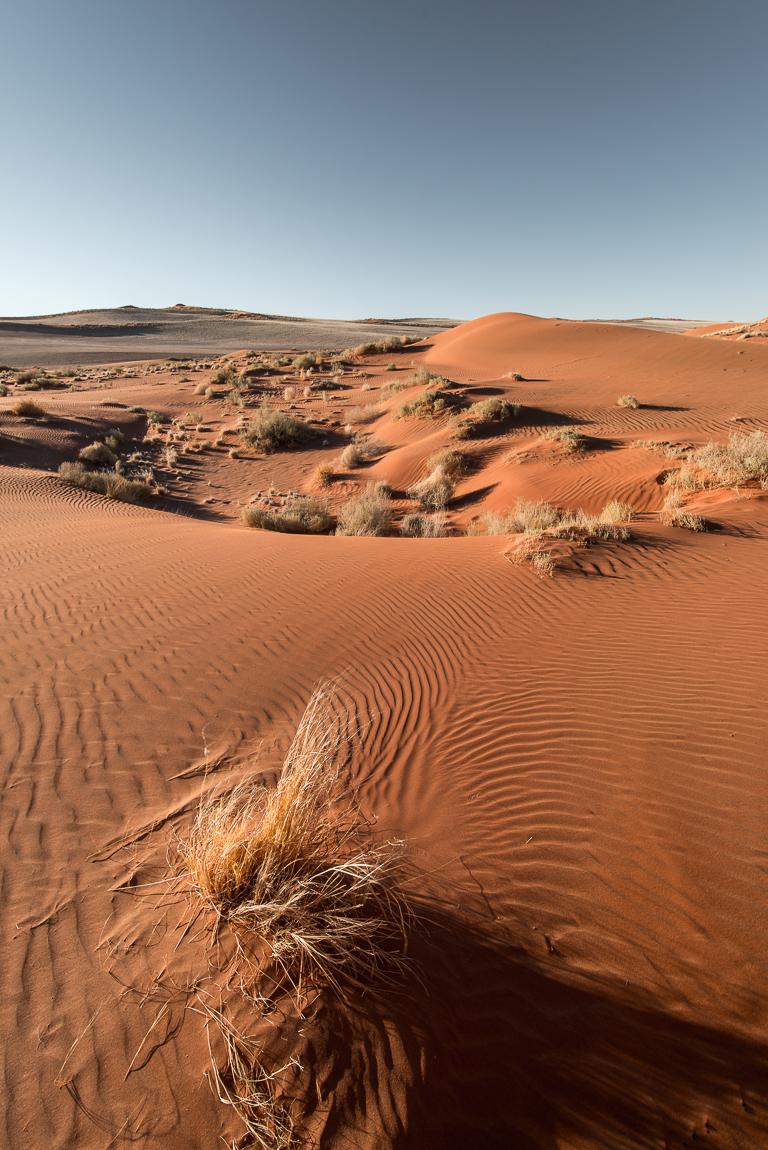 namibia-chris_schmid-86.jpg