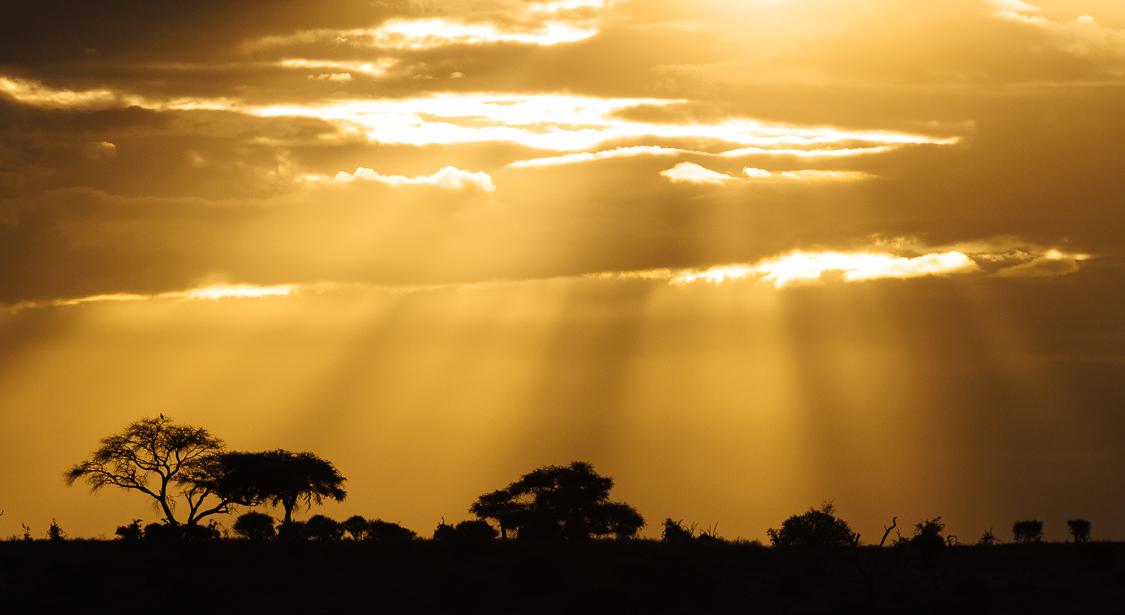 botswana-16.jpg