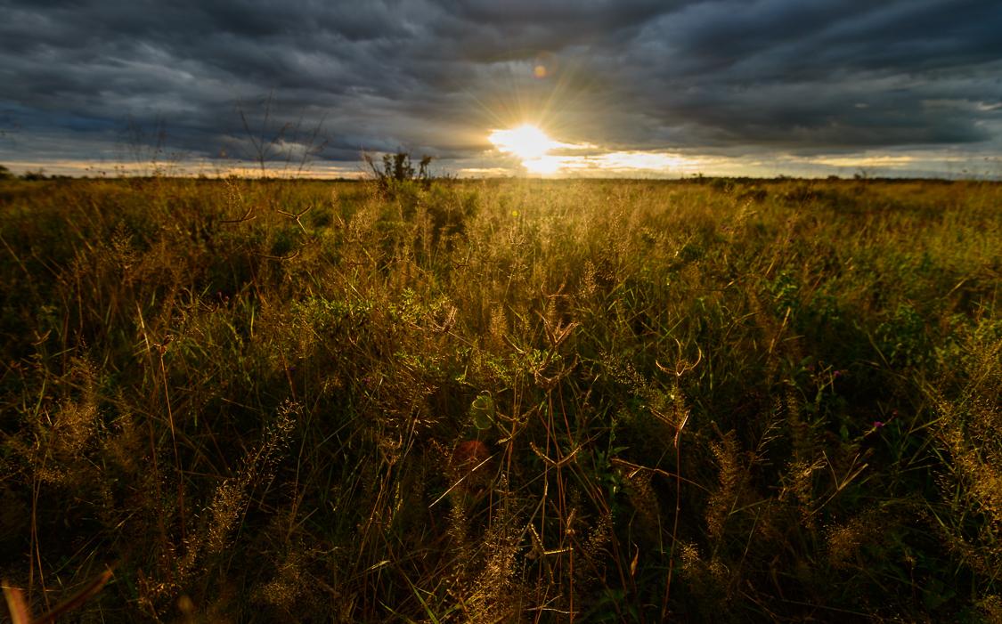 botswana-15.jpg