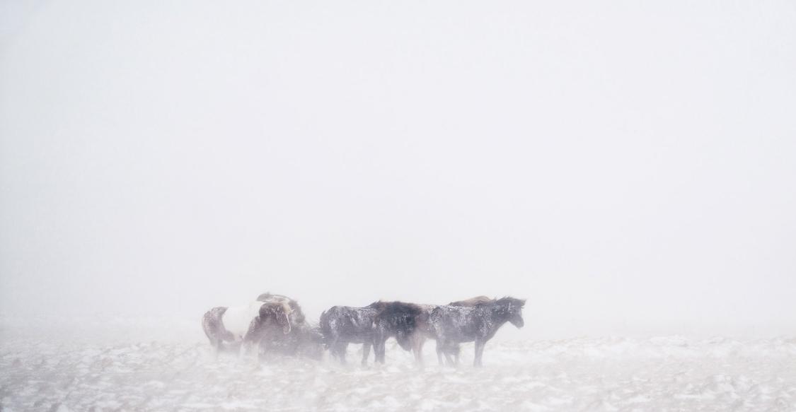 iceland_chris-schmid-44.jpg