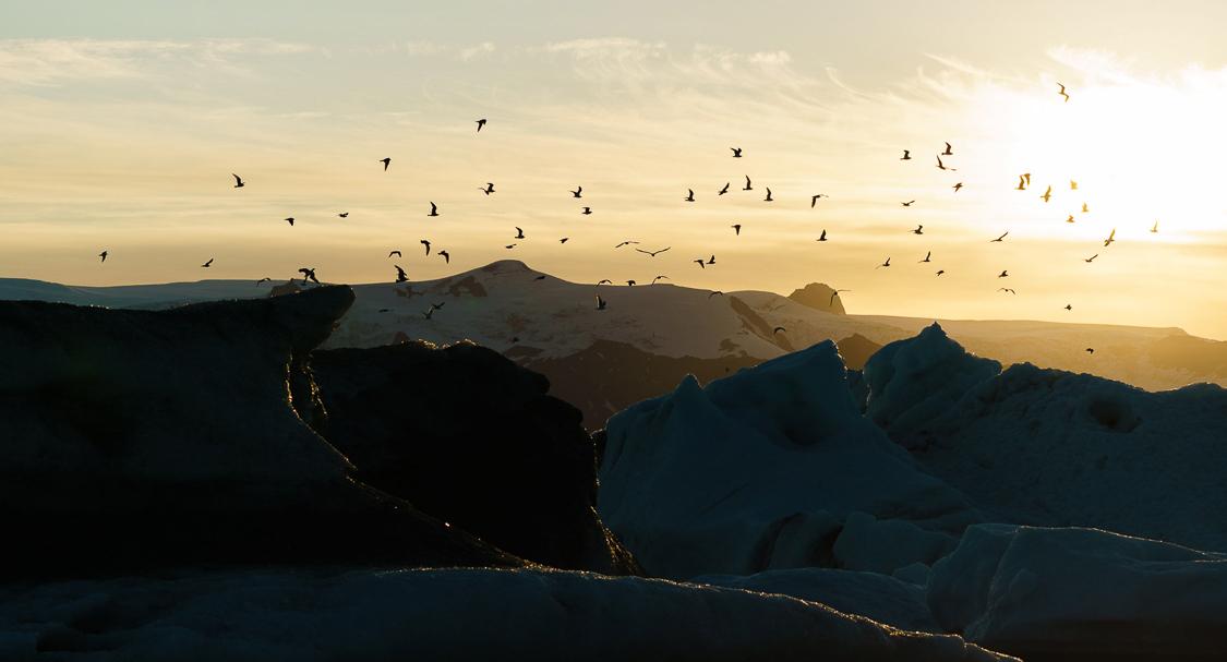 iceland_chris-schmid-49.jpg