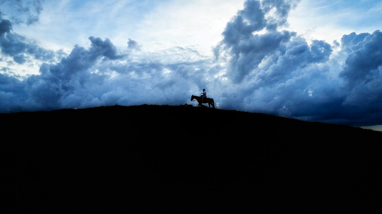o homem do campo - the gaucho -