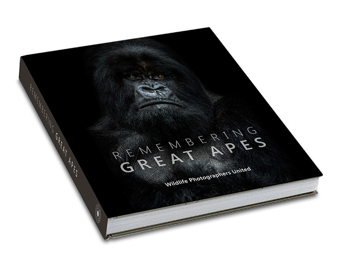 1516959105-Small_Remembering_Apes_Book_Cover_v1.jpg