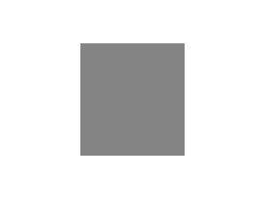 Sachtler.png