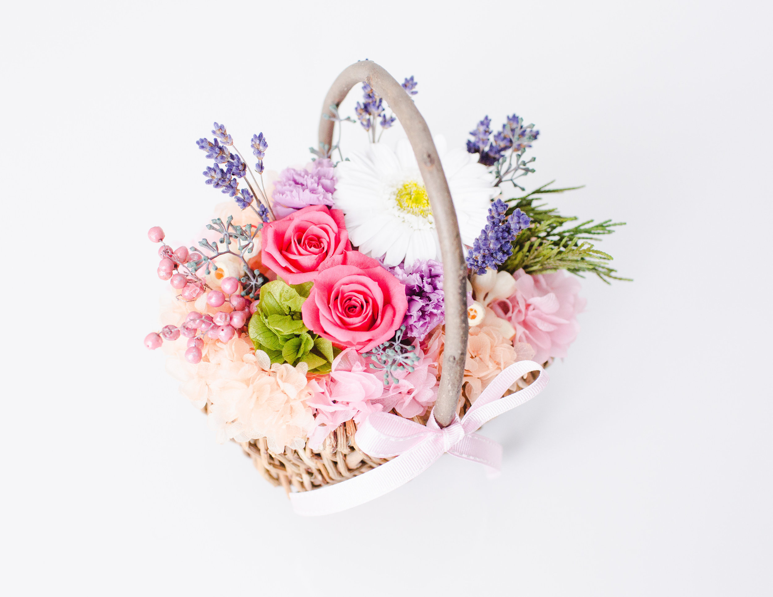 Eardley Flower by Chisa-Full Gallery-0018.jpg