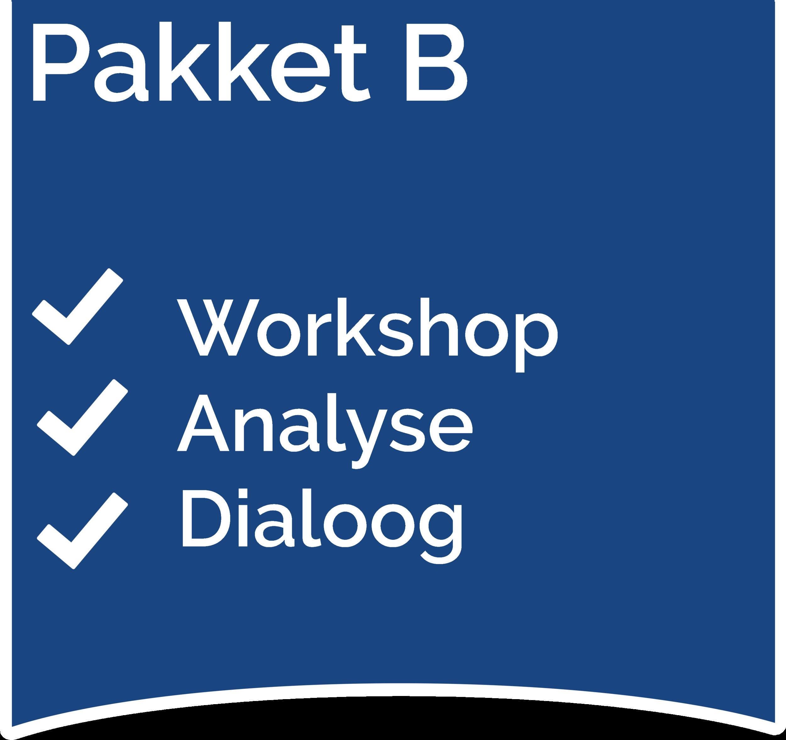 Medewerkersdialoog Workshop, Analyse en Dialoog