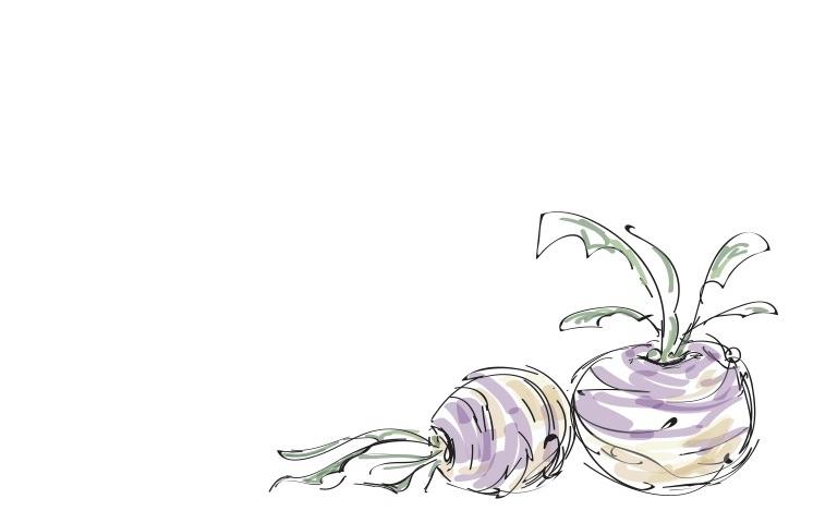 book border turnip.jpg