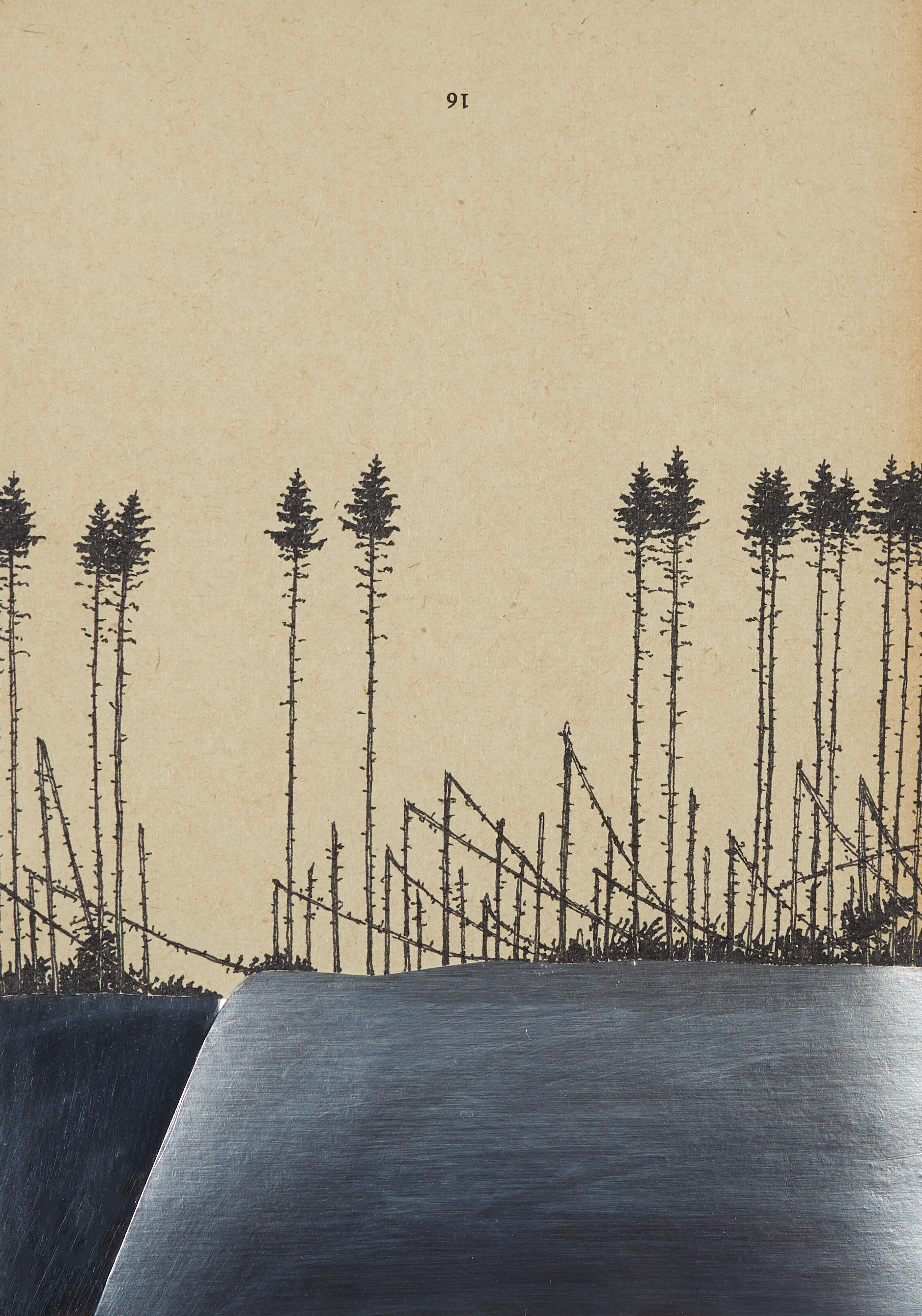 MICHAEL MERKEL, o.T. (Serie:  Im Cynwald ), 2017, Folie, Fineliner und Tusche auf Buchseite, 20 x 14 cm
