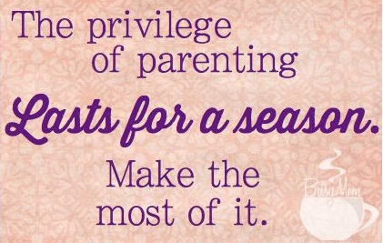priviledge of parenting cropped.jpg