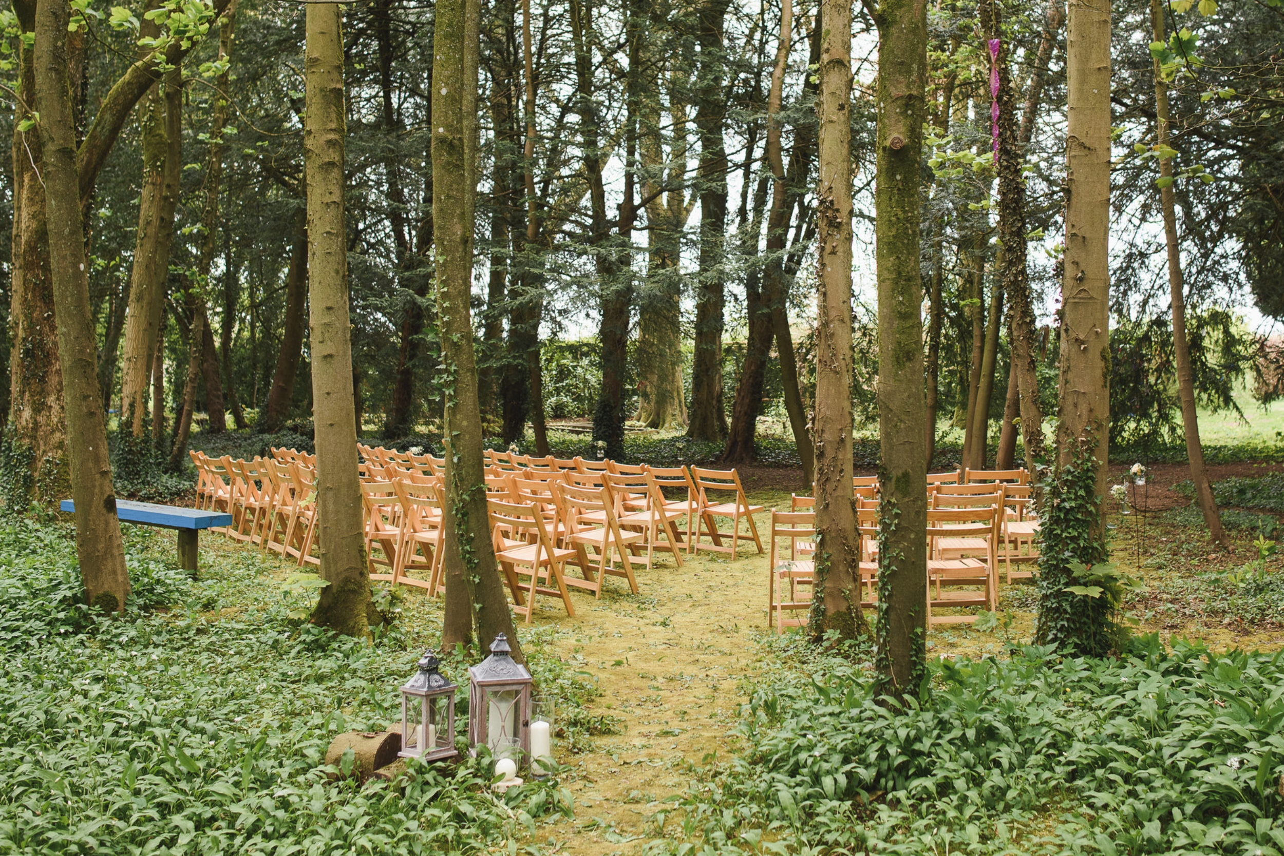 woodland-wedding-ceremony-the-planning-lounge