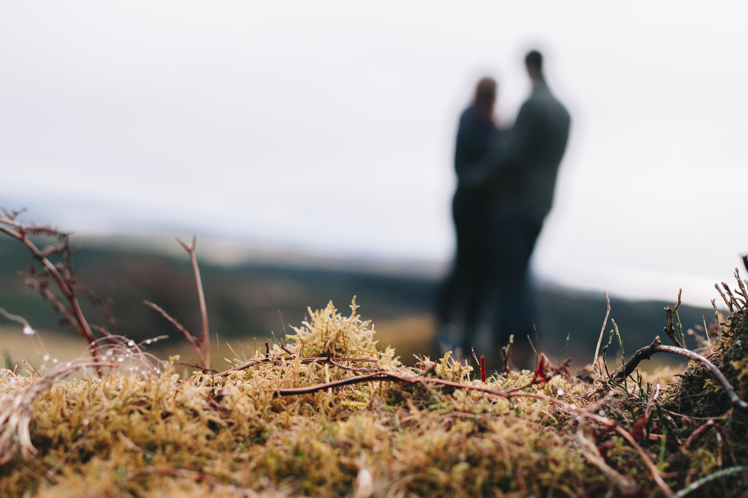 Alex + Matt - Windermere Engagement Photography - Claire Basiuk - 07.jpg