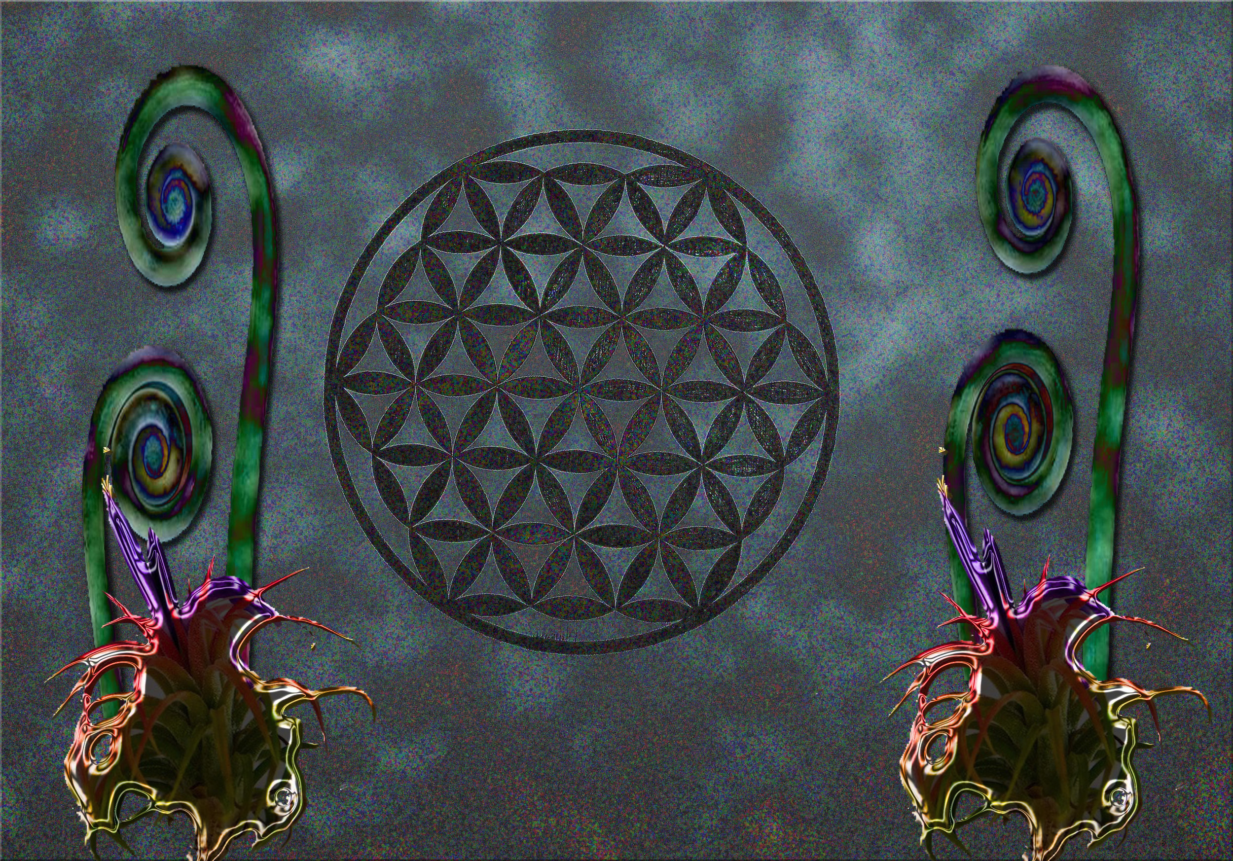space airplant flower of life combo.jpg