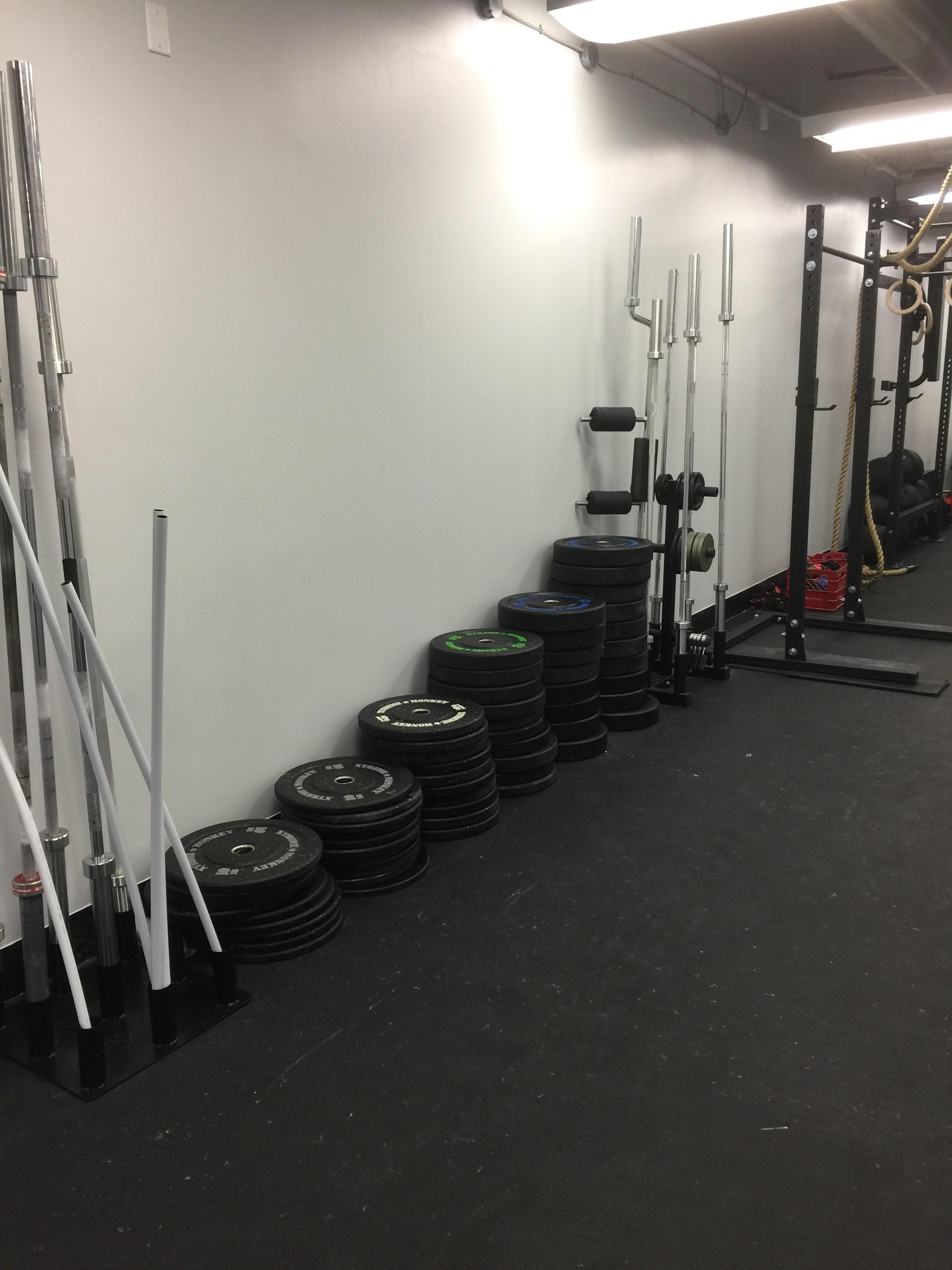 gym 7.jpg
