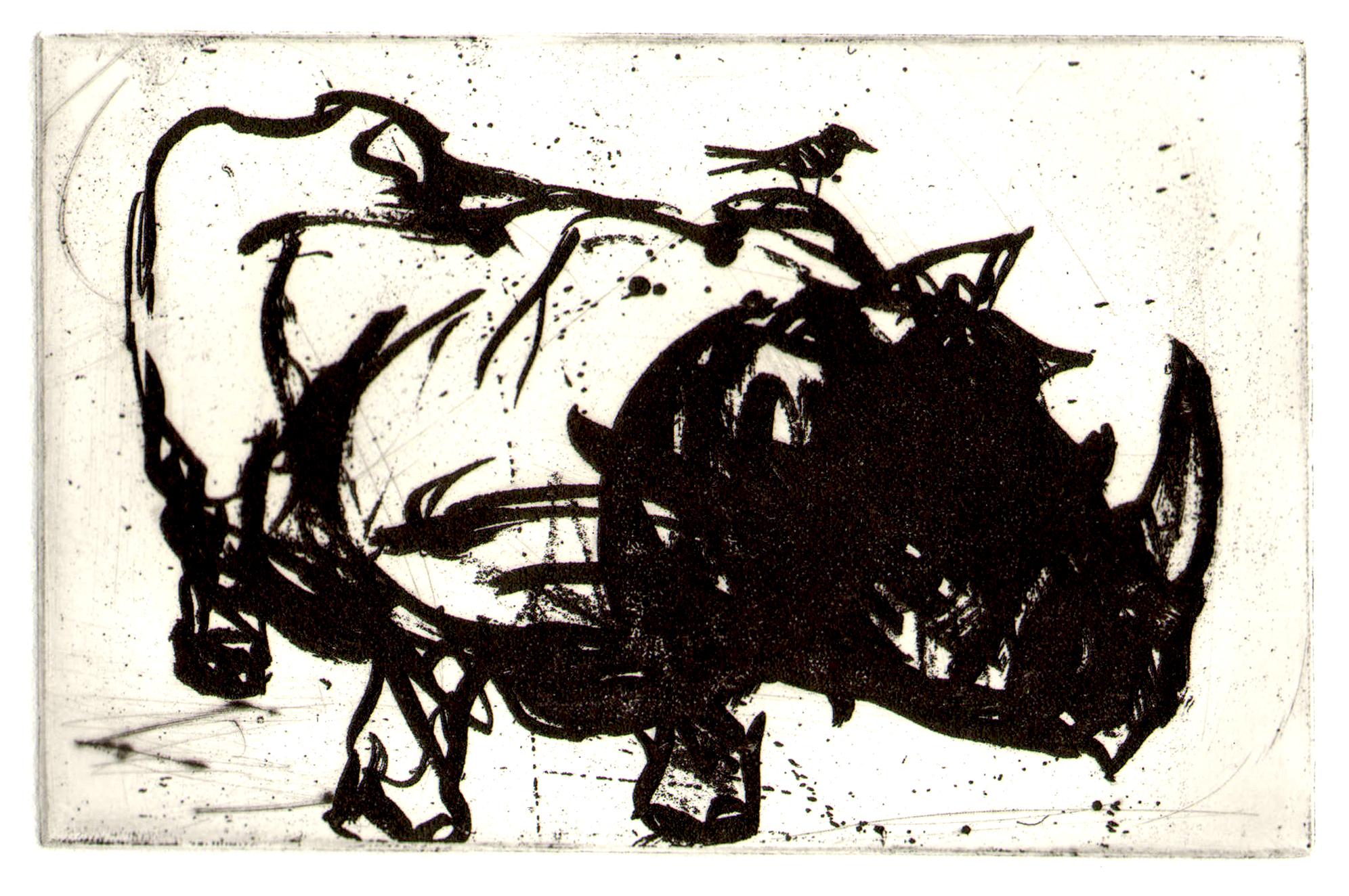 etch rhino.jpg