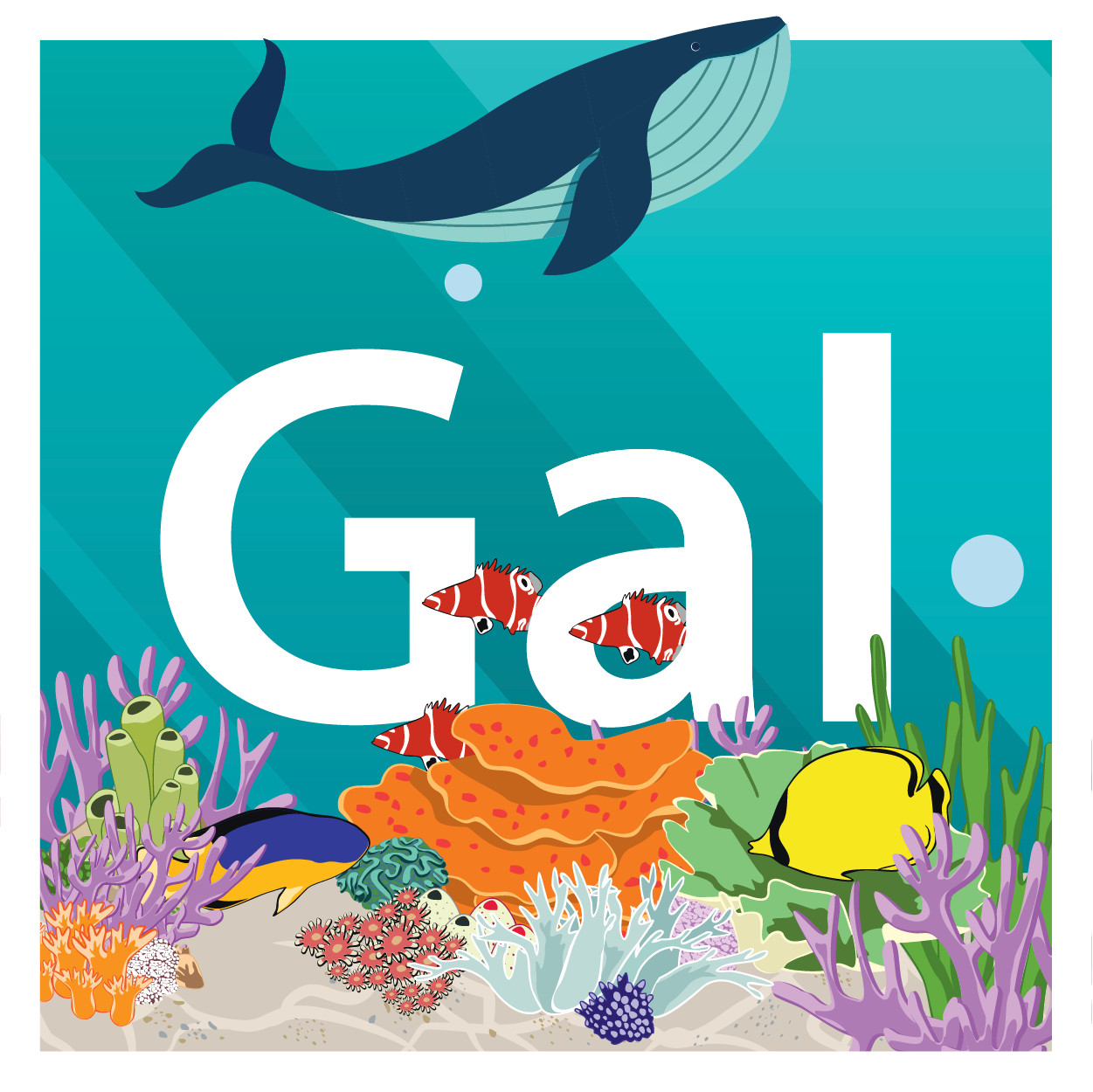 Celebrate #WorldOceansDay with Gal! Check out the free stock video below.