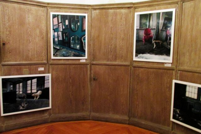 "June 14th 2016 - January 17th, 2017, Villa Firenze in Washington DC Residence of the Ambassador of Italy to the US, Solo Exhibition ""Parallel Journeys"", curated by Renato Miracco,     this Event is part of Artists in Residence at Villa Firenze, 2800 Albemarle St NW Washington, District of Columbia 20008."