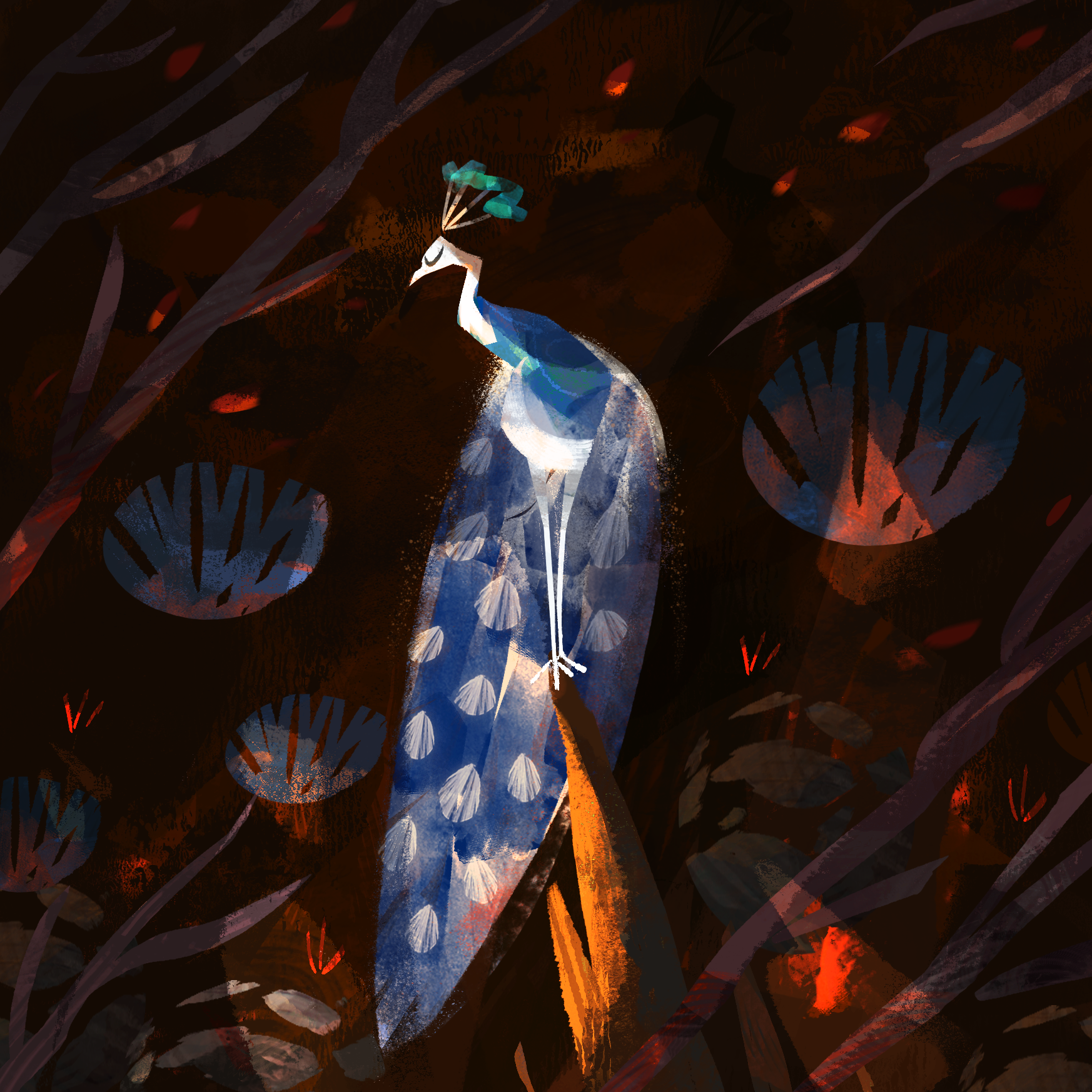 peacock03.png