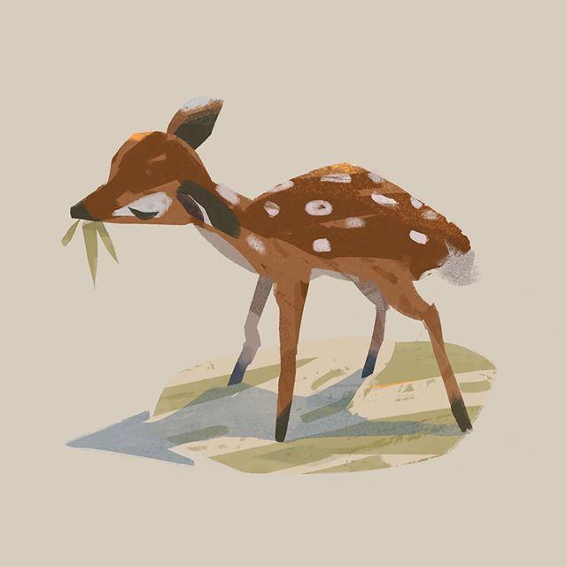 - #sketch #animalstudy #animal #animalsketch #sikadeer #rabbit #hare #dog #practice #stylized #visdev #characters #illustration #illustrator #artistsoninstagram #art #color #wacom #photoshop