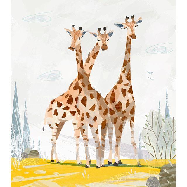 早起練習 / animal study in the morning - #artist #animals #插畫 #illustrator #illustration #artistsoninstagram #artstyle #visdev #characterdesigns  #sketch #sketchbook #digitalart #painting #wacom #photoshop #brush #giraffe