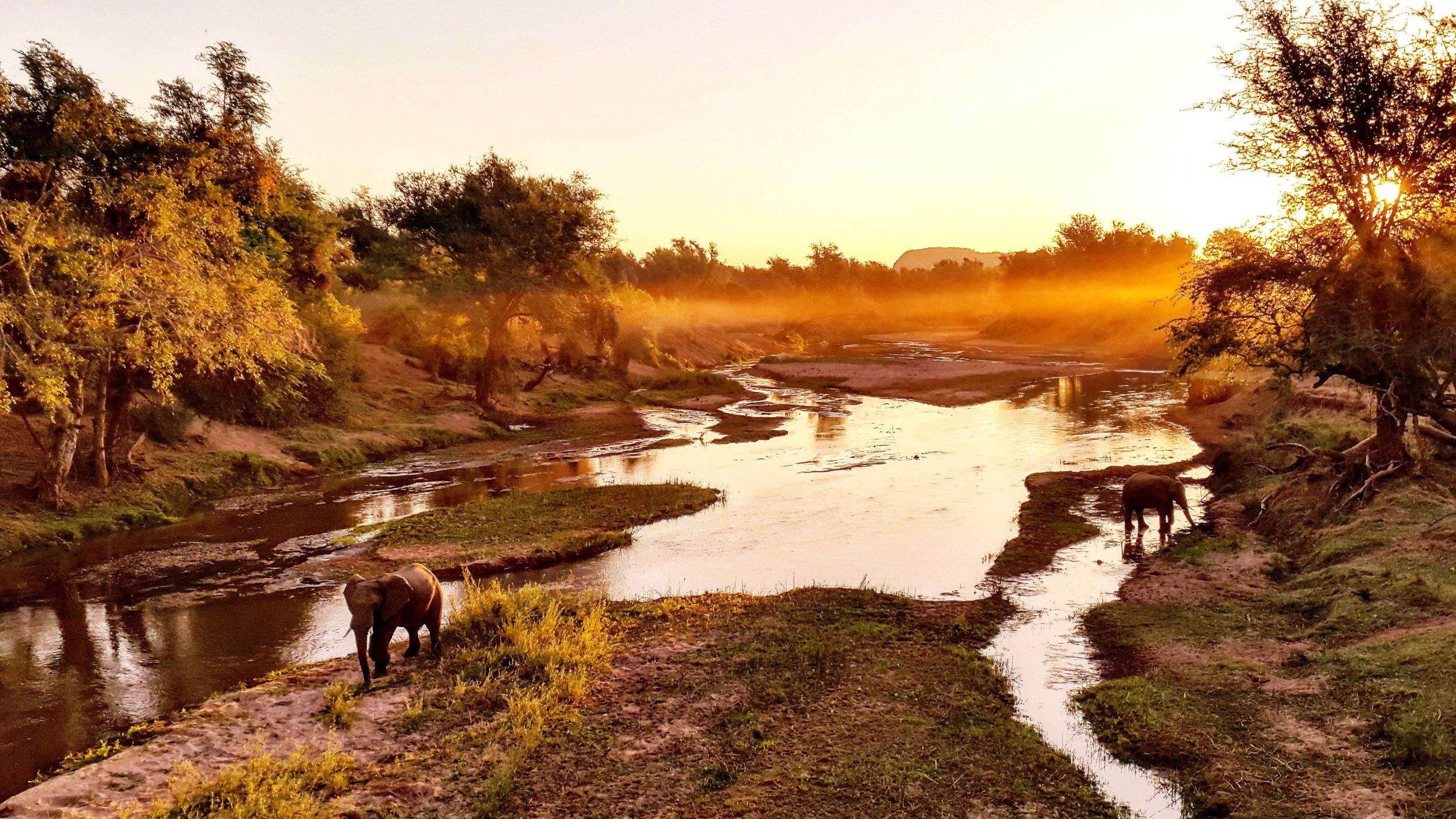 GOLDEN BULLS: Winter morning light at the bridge crossing the Luvuvhu River, a place that often holds hidden surprises.