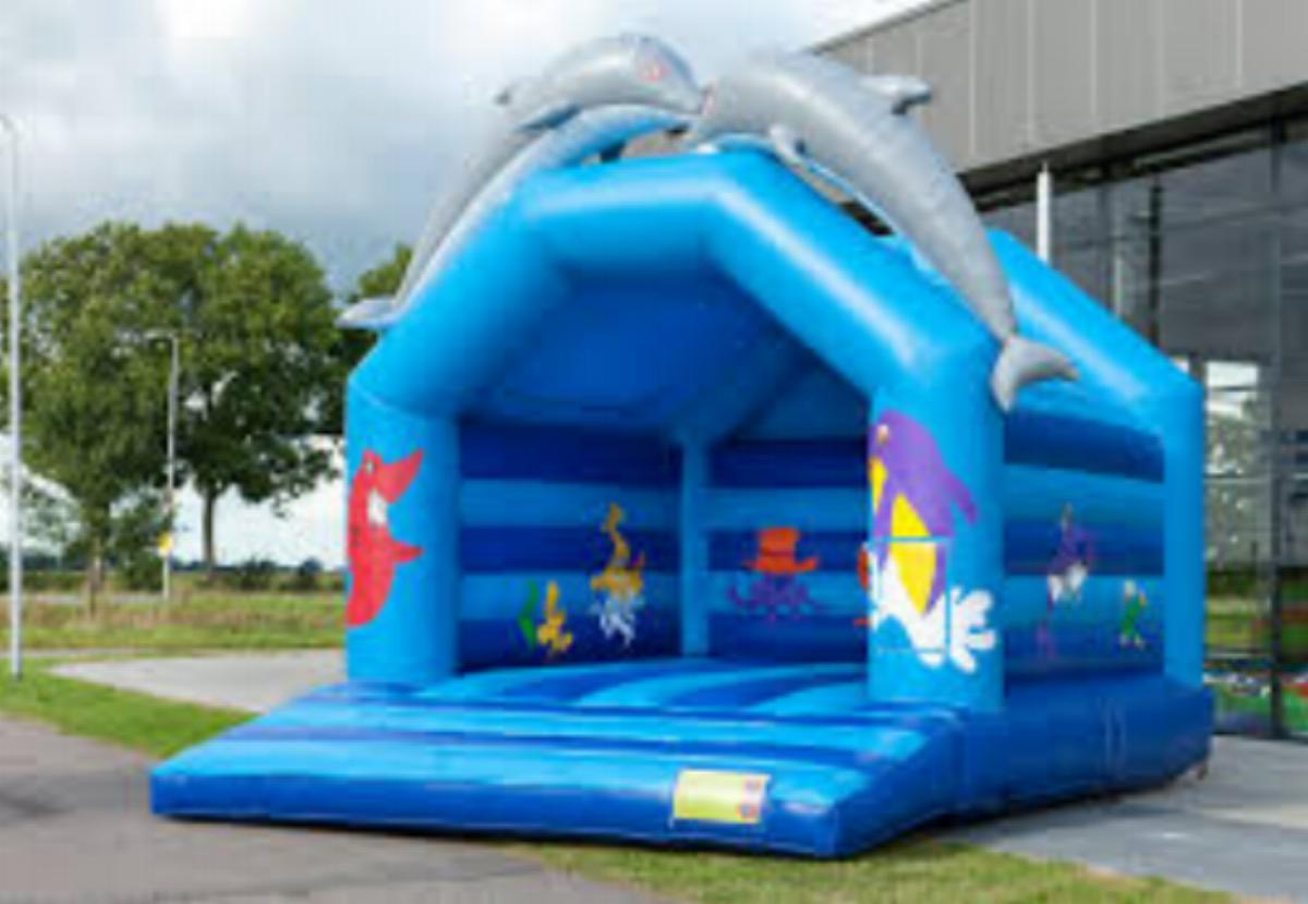 - Dolphin Bouncy Castle $385 (3 hour metro hire)