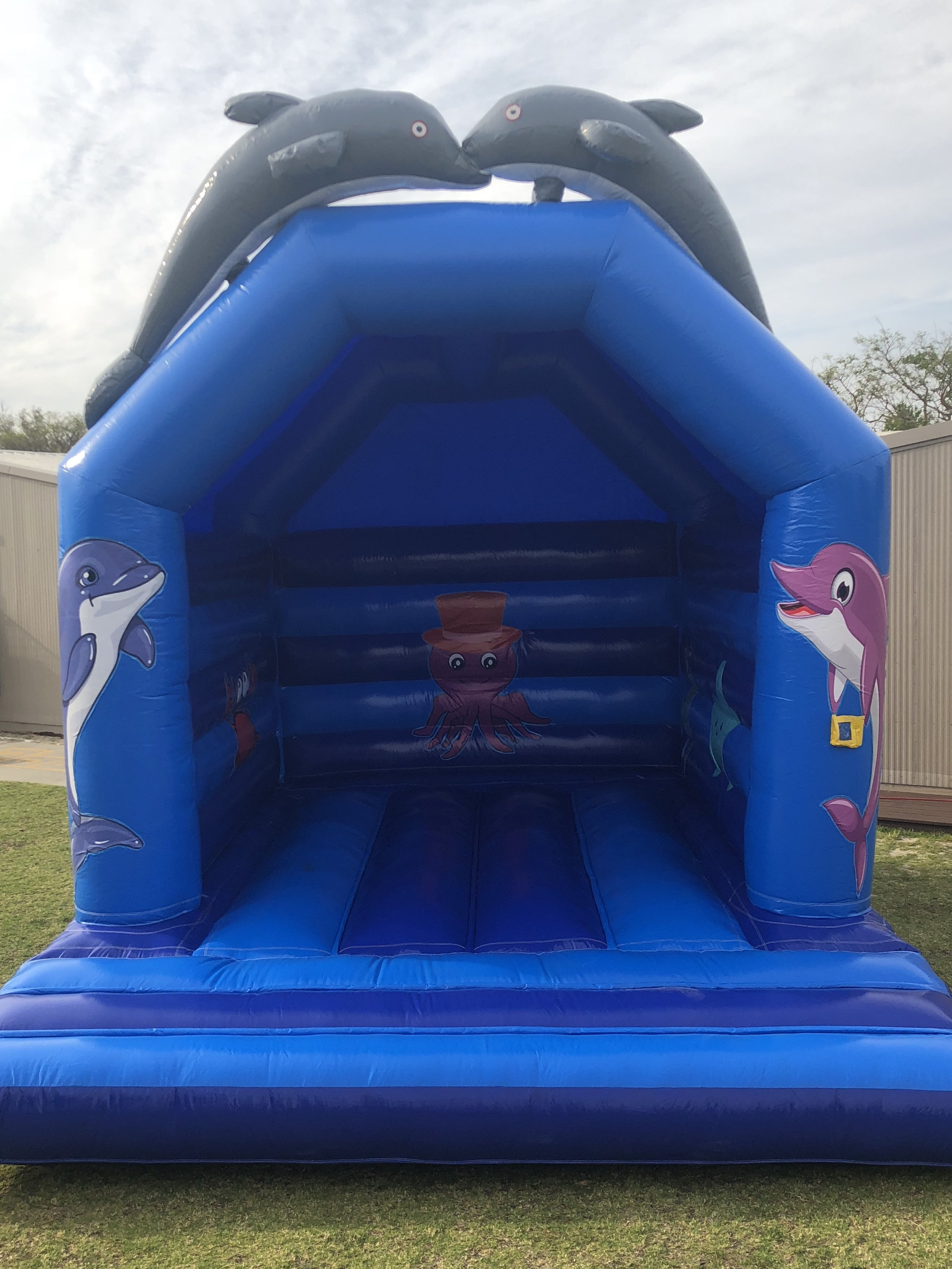 Dolphin Bouncy Castle $350 -