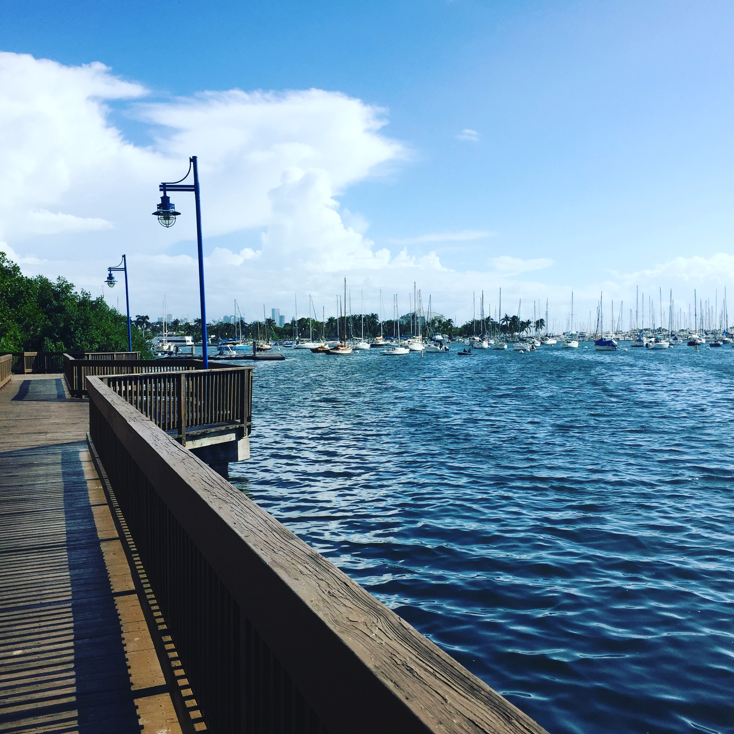 Coconut Grove Bay
