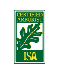 certified arborist in Wappingers Falls, NY