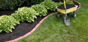 Mulching dos and donts for Dutchess County NY