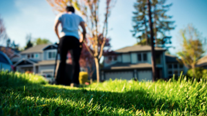 professional lawn mowing vs do it myself?