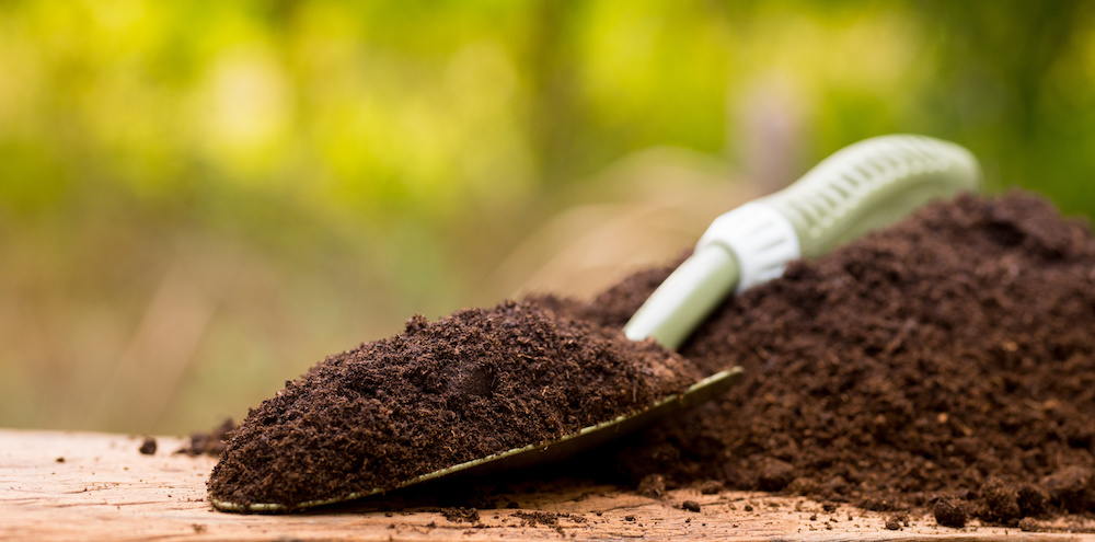4 Advantages of Organic Fertilization in Hopewell Junction NY