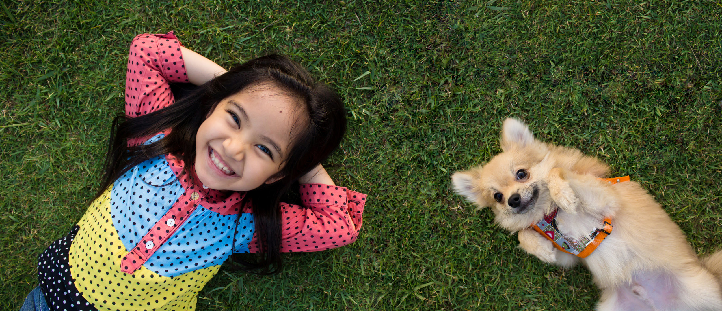 Is a Lawn Fertilizer Service Safe for Your Kids and Pets?
