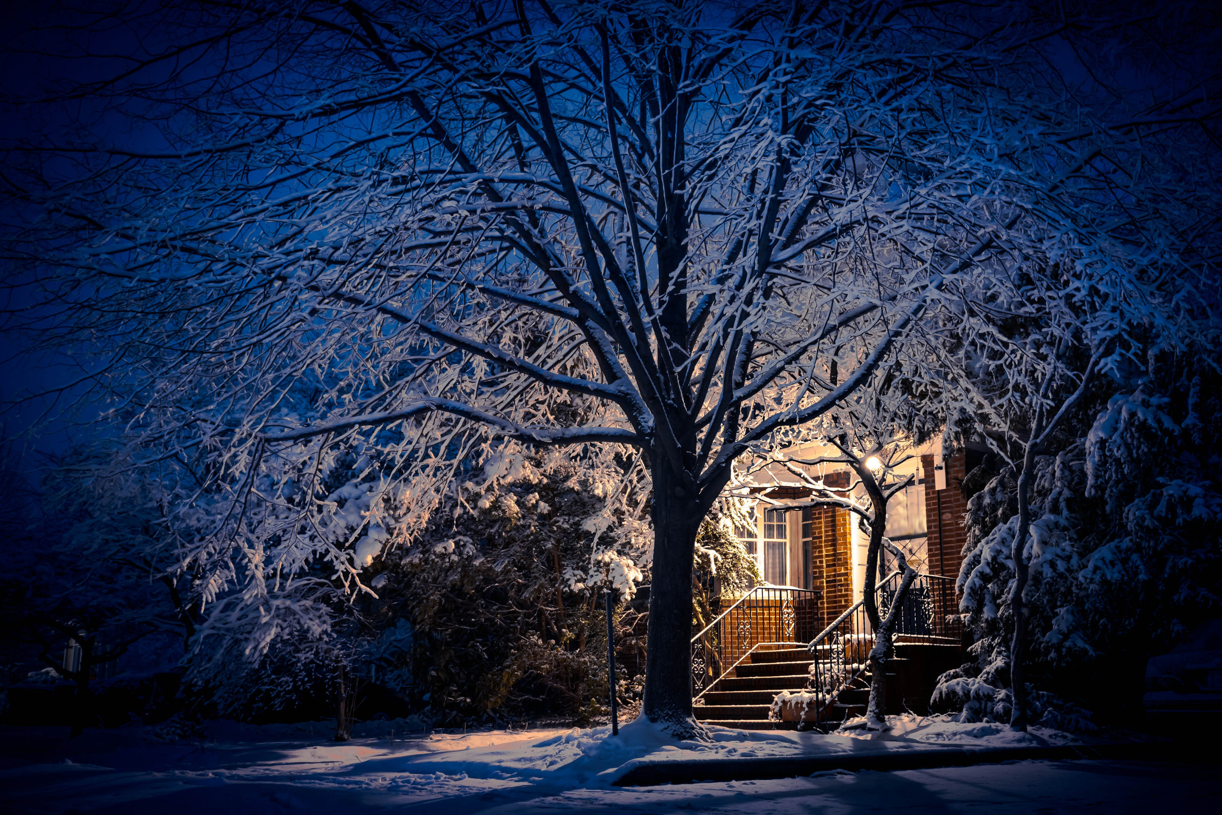 4 Landscape Lighting Maintenance Tips for Winter in Hopewell Junction, NY