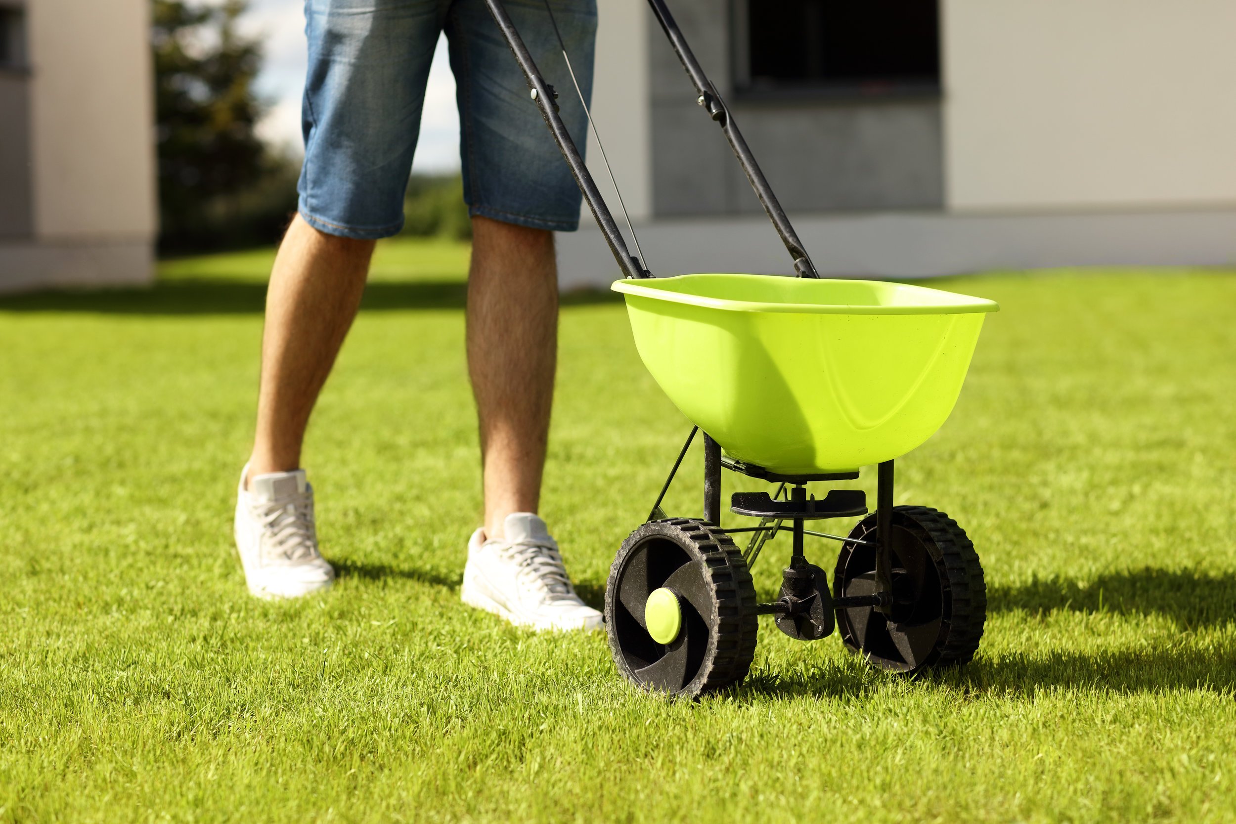 Why Spring Is the Best Time for Lawn Fertilizer Service in Hopewell Junction, NY