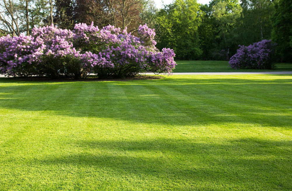 Commercial landscaping in Hudson Valley, NY with top fertilization