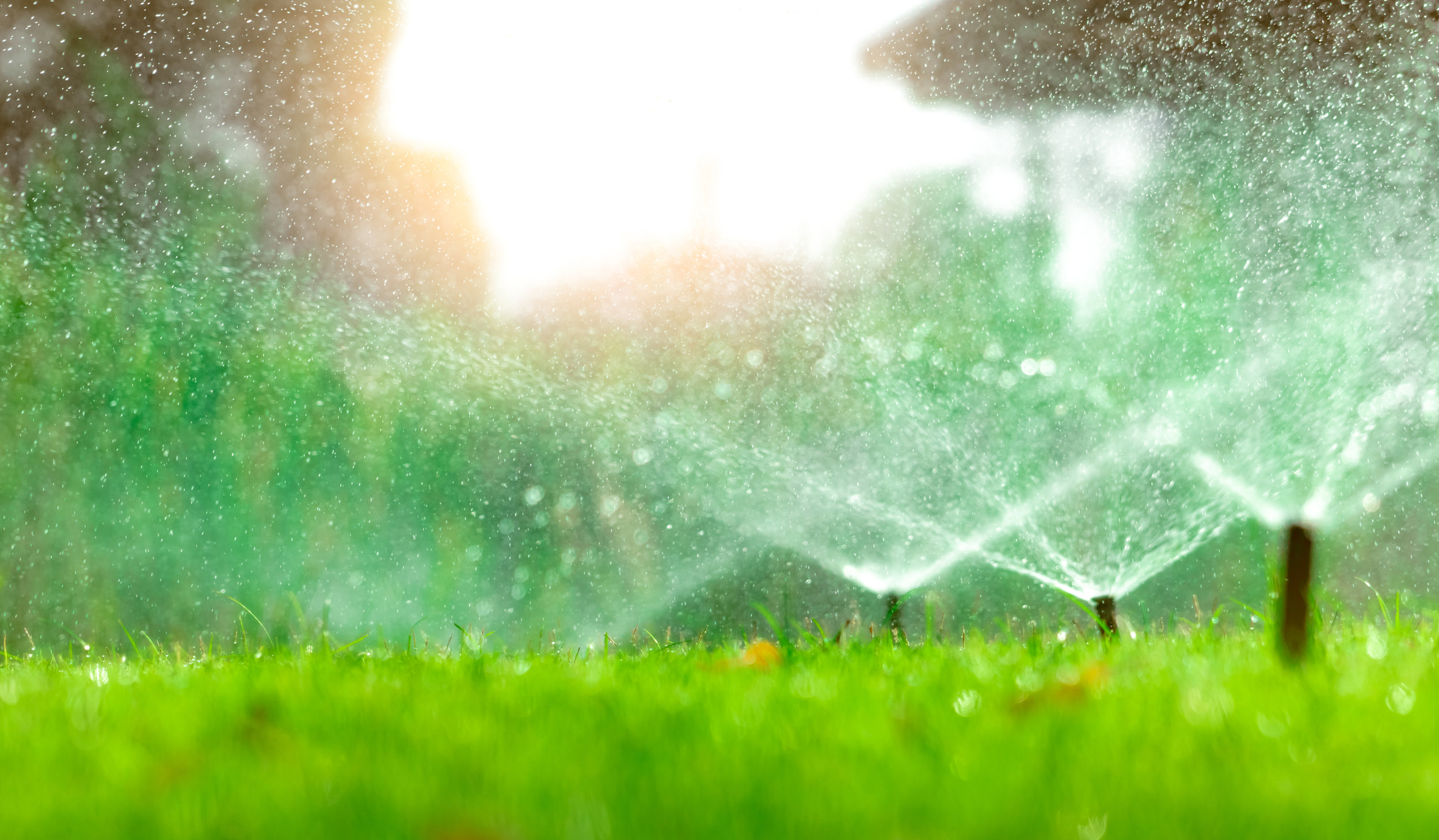 Irrigation Can Help Beat the Heat for Your Lagrangeville, NY Lawn